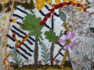 Photo représentant une forêt réalisée avec des végétaux